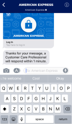 Apple Business Chat providers can use a companion iMessage app to authenticate users by signing into their app.
