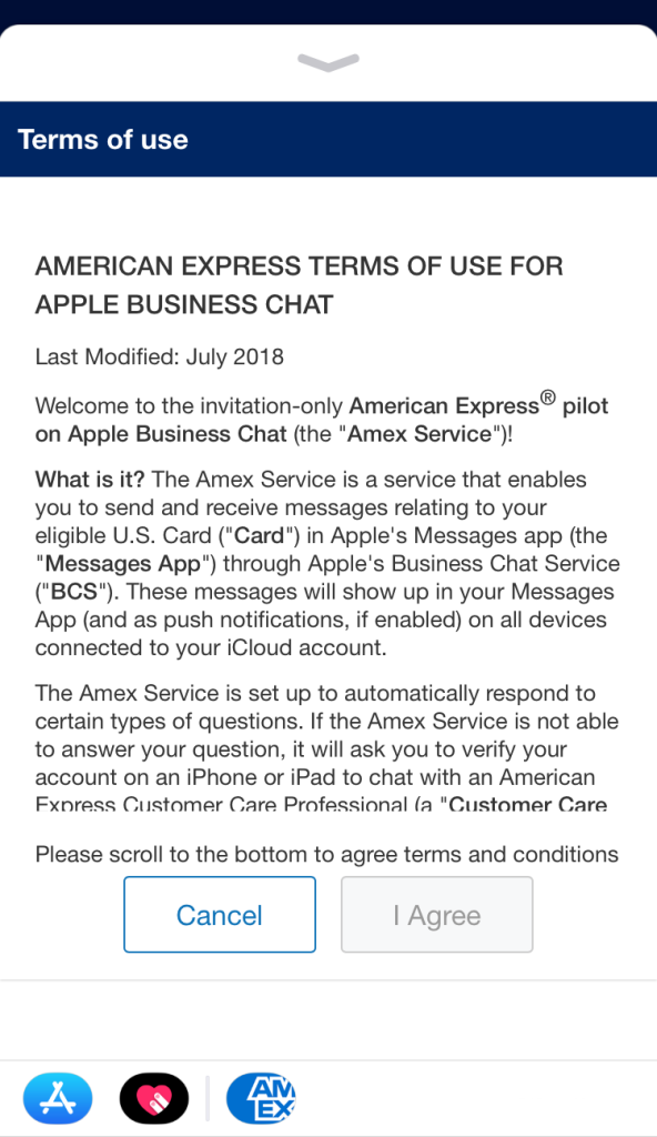 American Express uses the built-in Messages app to display terms and conditions to accept before chatting.